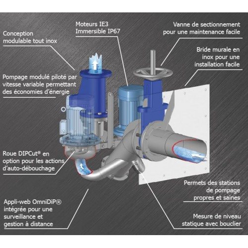 Direct In-Line Pump System