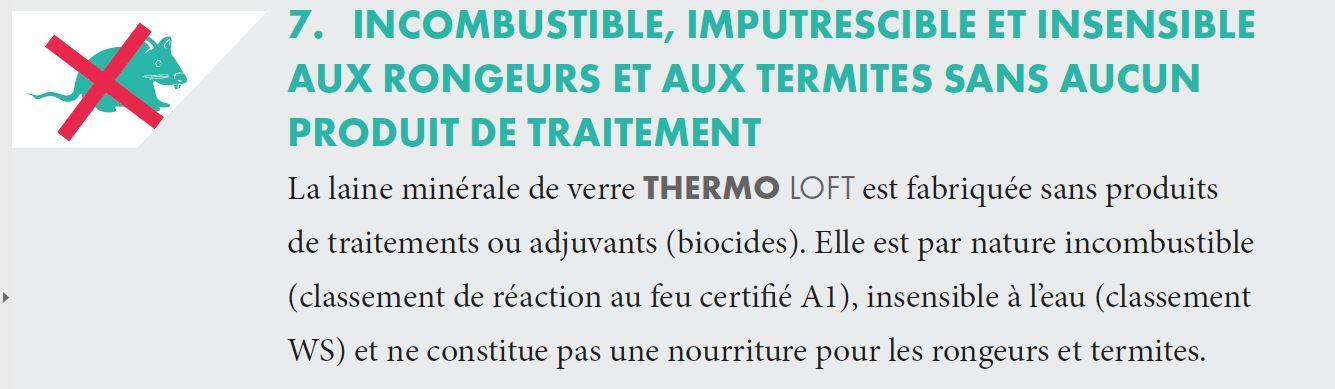 thermo_loft5a.jpg